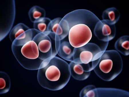 biotecnologia: Grupo de células sobre un fondo oscuro