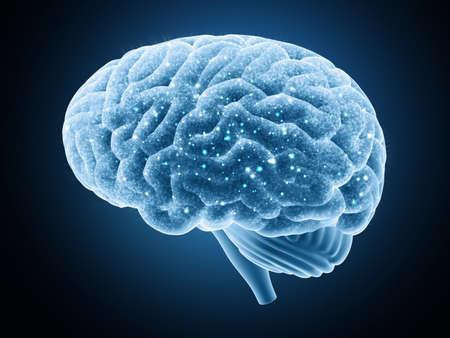 Cervello isolato su uno sfondo scuro. Gli impulsi nervosi.