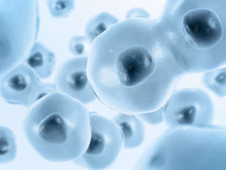 Cell divides into two cells. Blue-gray color. Foto de archivo