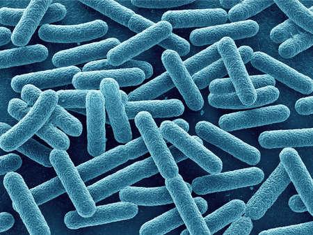 Bakterie Escherichia coli 3d z bliska. W kształcie pręta. Zdjęcie Seryjne