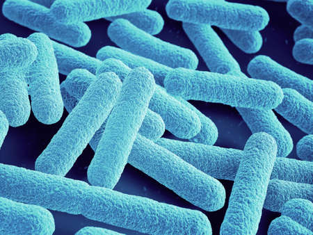 Escherichia coli bacteria 3d close up. Rod-shaped. Blue color. Bacterial Multiplication.