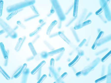 Probiotiques Lactobacillus acidophilus
