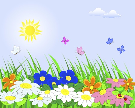 Floral landscape with grass, dew, ladybugs and butterflies against the sunny sky with clouds Illustration  Vector