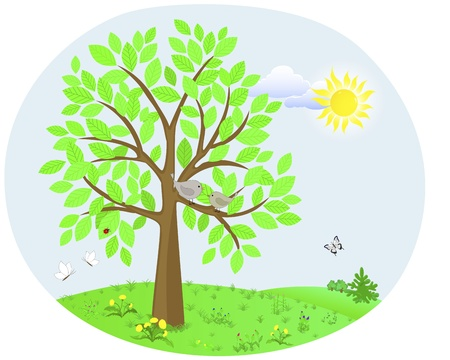Tree with a cute birds on the background of the spring landscape with flowers and insects illustration  Vector