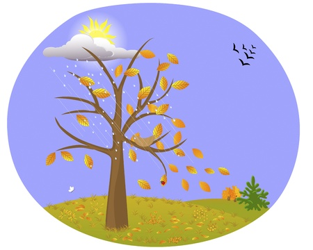 The tree with yellow leaves on the background of the autumn landscape and the birds flying away Illustration Stock Vector - 14169477