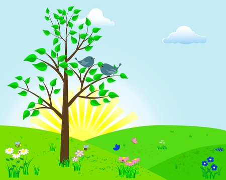 Birds on a tree against the morning sun, a lawn with flowers, butterflies and a ladybird   Vector
