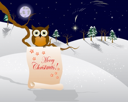 christmas owl: Winter landscape with christmas star and Owl on a branch.