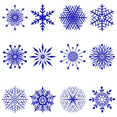 Set of 12 snowflakes. Vector illustration.