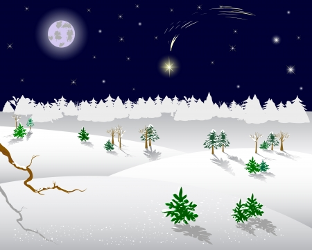 Winter landscape. Christmas star on a night sky. Vector illustration.