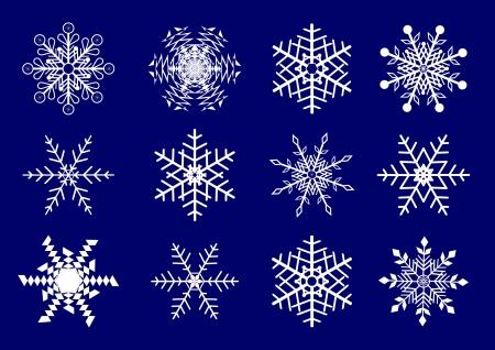 Vector set  of 12 beautiful snowflakes. Illustration