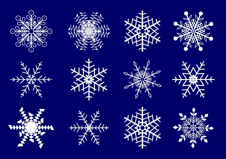 Vector set  of 12 beautiful snowflakes. Illustration