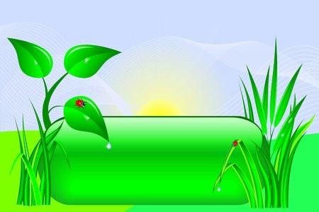 Eco Design tlačítka se stromem a trávy