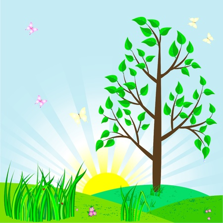 Landscape with tree and sun   Vector