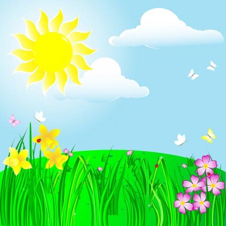 ochtend dauw: Lente landschap met zon, bloem en lieveheersbeestjes