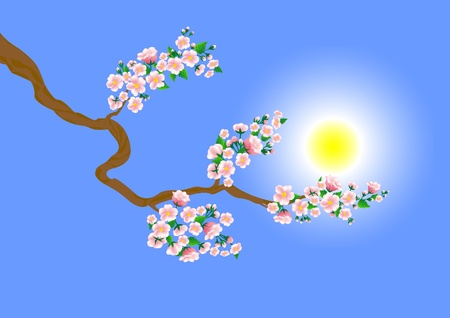 Spring branch with a blossom. Stock Vector - 17233223