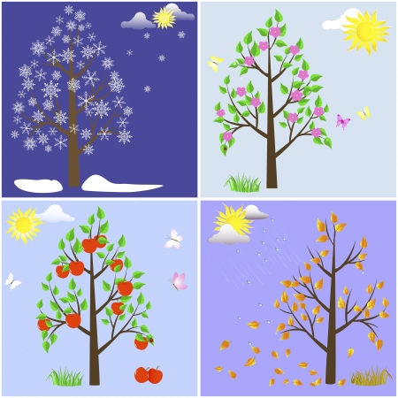 snow drop: Trees in four seasons-spring, summer, autumn, winter
