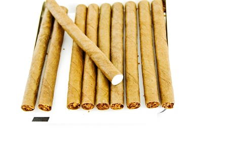 Cigars are in a box isolated on white  Stock Photo - 17945920
