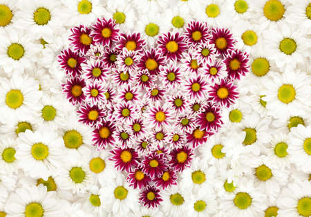 yellow heart: heart made of flowers on white flower texture