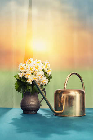 ewer: ewer and a flowers in a retro copper mug in front of a open window on table with beautiful scenic background