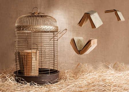 libros volando: libertad conpept con bidrcage y libros volando en fondo del grunge