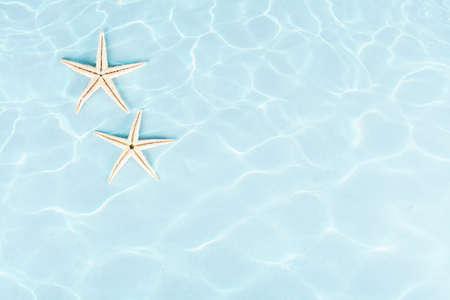 etoile de mer: deux étoiles de mer sous l'eau sur fond bleu