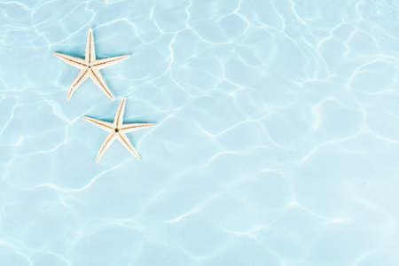 still water: two starfishes under water on blue background Stock Photo