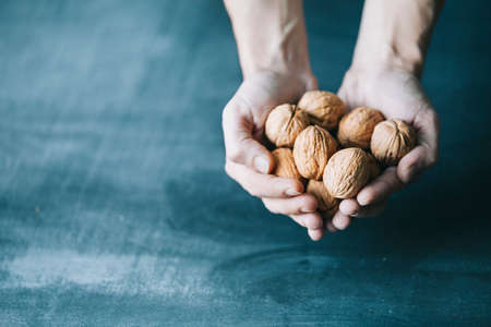 human hand holding walnuts on dark blue background photo