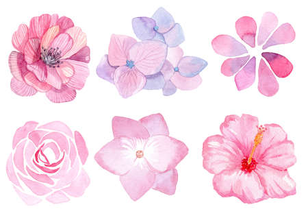 watercolor pink flowers set isolated on white background for wedding card invitations, card decoration, print
