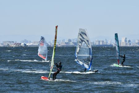 windsurfers: Tokyo Bay windsurfers