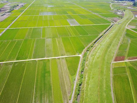 Machida of Japans rice 스톡 콘텐츠