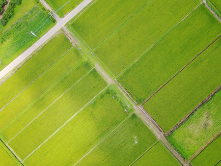 Japans countryside
