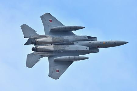 Air self-defense force's Eagle