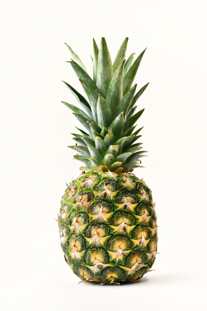 The Immature pineapple