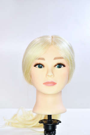 Mannequins for hairstyle practice