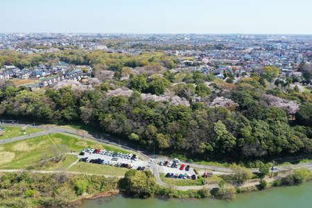 Spring Satomi Park