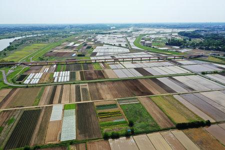 Rural scenery before rice planting
