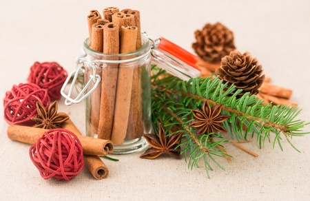 Anise and cinnamon with fir photo