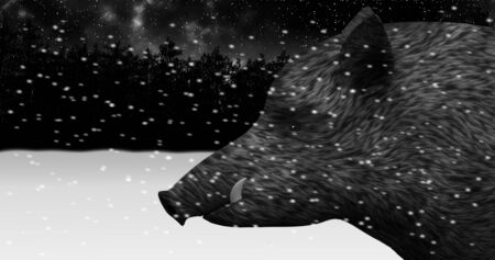 Wild boar in a night snowy winter forest animation