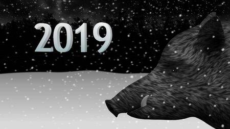Wild boar new year 2019 in winter forest Standard-Bild