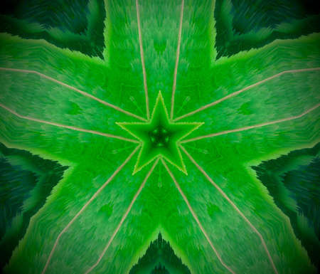 Extruded mandala. 3D illustration. Abstract shapes. Green, white and black. Three sided stars.