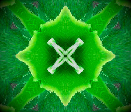 Extruded mandala. 3D illustration. Abstract X shape. Green, white and black.