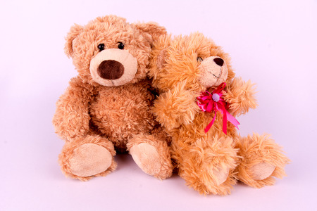 stuff toy: Couple brown toy bears on white background Stock Photo