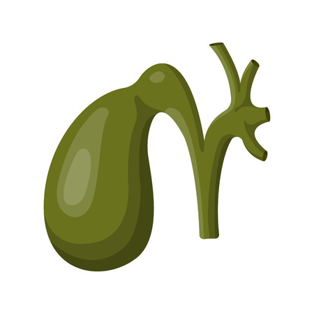 Stomach icon vector illustration.