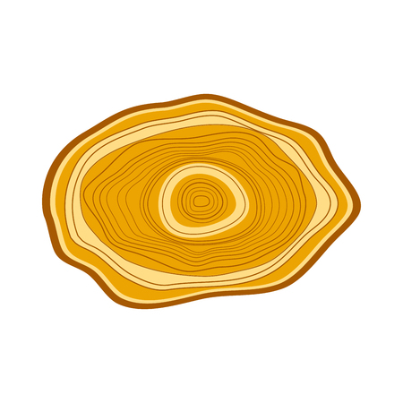 Tree wood slices vector.