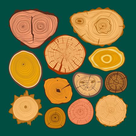 rings on a tree cut: Tree wood slices vector set Illustration