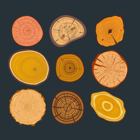rings on a tree cut: Tree wood slices set