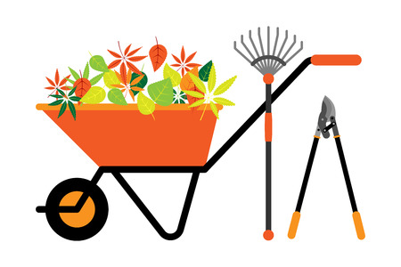 hauling: Cleaning leaves tools wheelbarrow vector illustration. Illustration