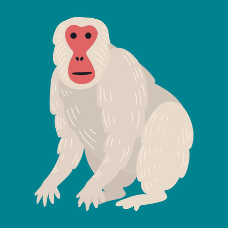 Macaque monkey rare animal vector.