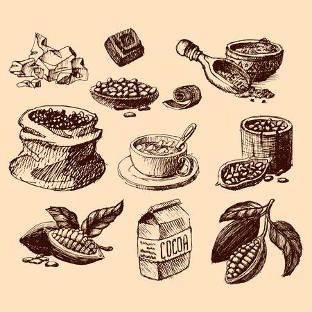 Vector cacao hand getrokken schets. Doodle voedsel chocolade zoete illustratie. Vintage stijl plantaardige boon ingrediënt. Organisch symbool van het cacao tropische menu.