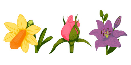 Vintage flowers vector illustration.